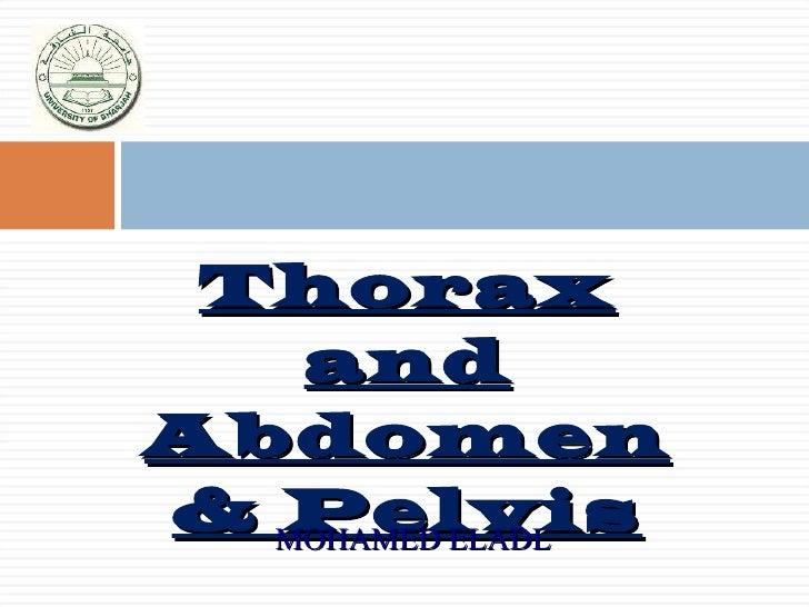 <ul><li>Thorax and Abdomen & Pelvis </li></ul>MOHAMED ELADL