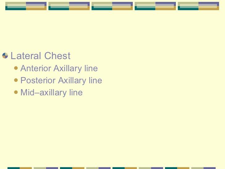 <ul><li>Lateral Chest </li></ul><ul><ul><li>Anterior Axillary line </li></ul></ul><ul><ul><li>Posterior Axillary line </li...