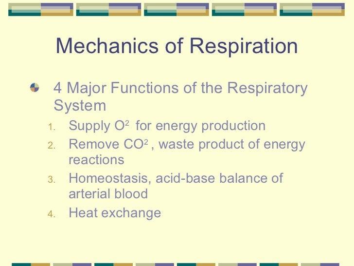 Mechanics of Respiration <ul><li>4 Major Functions of the Respiratory System </li></ul><ul><ul><li>Supply O 2  for energy ...