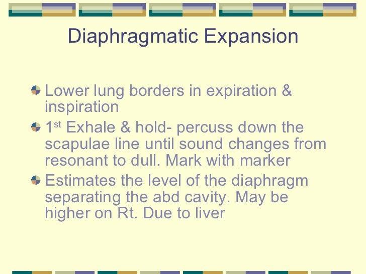 Diaphragmatic Expansion <ul><li>Lower lung borders in expiration & inspiration </li></ul><ul><li>1 st  Exhale & hold- perc...