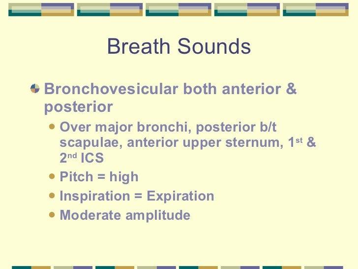 Breath Sounds <ul><li>Bronchovesicular both anterior & posterior </li></ul><ul><ul><li>Over major bronchi, posterior b/t s...