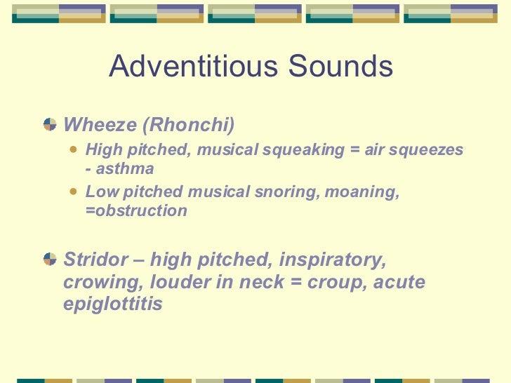 Adventitious Sounds  <ul><li>Wheeze (Rhonchi) </li></ul><ul><ul><li>High pitched, musical squeaking = air squeezes - asthm...