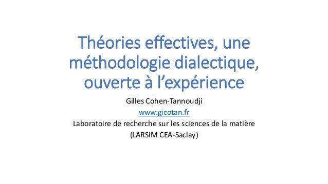 Théories effectives, une méthodologie dialectique, ouverte à l'expérience Gilles Cohen-Tannoudji www.gicotan.fr Laboratoir...