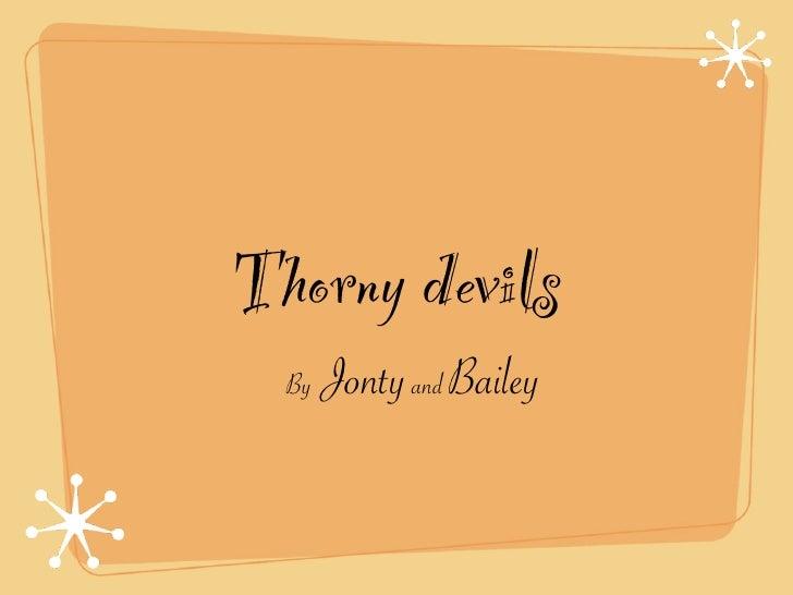 Thorny devils  By   Jonty and Bailey