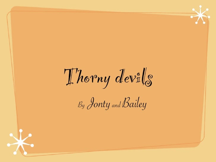 Thorny devils  By   Jonty and Bailey