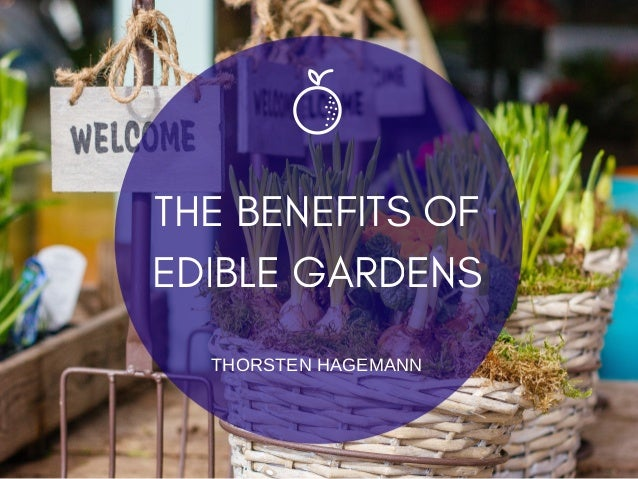 THE BENEFITS OF EDIBLE GARDENS THORSTEN HAGEMANN