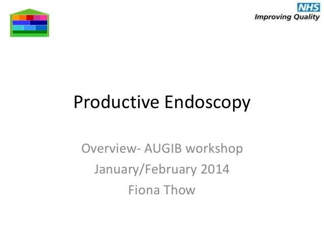 design -  -  -  Productive Endoscopy Overview- AUGIB workshop January/February 2014 Fiona Thow