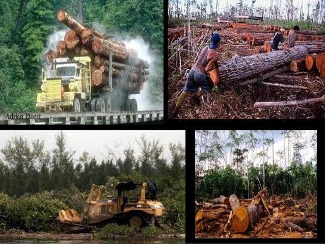 Threats to biodiversity for Construction habitat