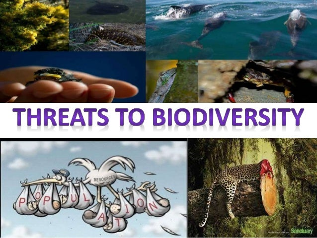 threats to biodiversity Threats to biodiversity the core threat to biodiversity on the planet, and therefore a threat to human welfare, is the combination of human population growth and resource exploitation the human population requires resources to survive and grow, and those resources are being removed unsustainably from the environment.