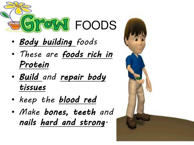 Three Basic Food Groups