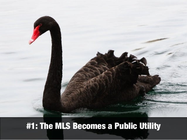 1  The MLS Becomes a Public Utility. Three black swans 2 0