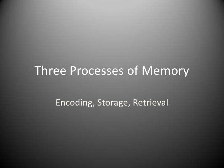 Three Processes of Memory<br />Encoding, Storage, Retrieval<br />