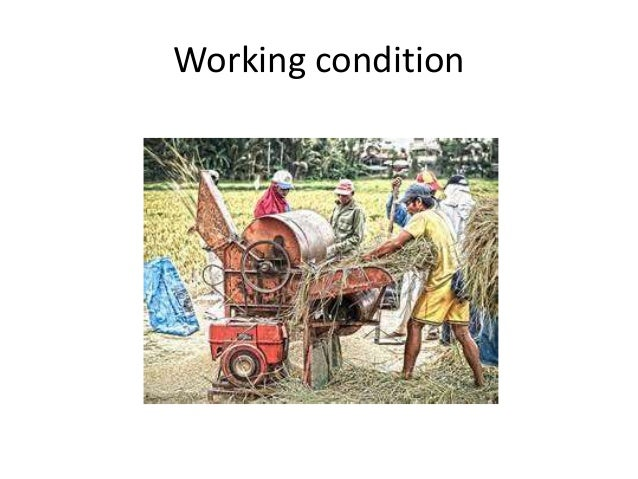 TM • Types of corn sheller • Spring sheller-It has a plate under spring pressure to hold the ears against a rotating disc ...