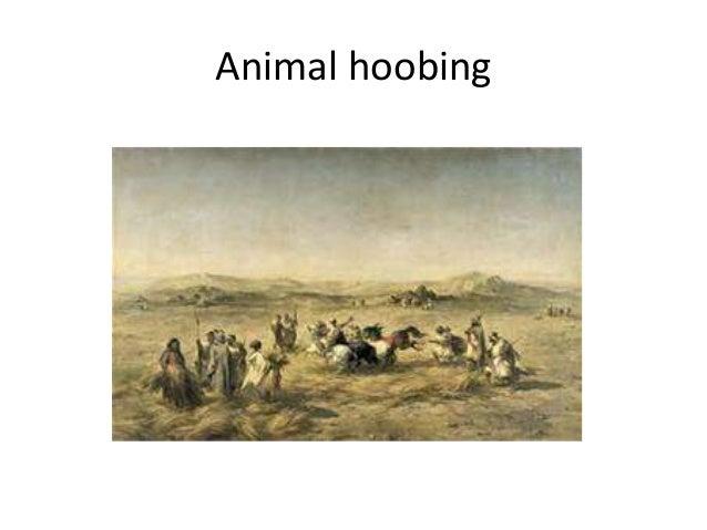 Animal hoobing