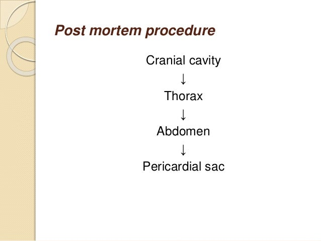manual removal of placenta procedure