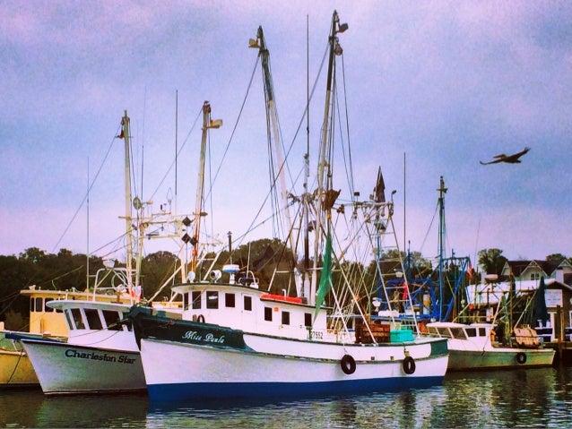 Through the Lens of an iPhone: Charleston, SC