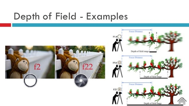 Depth of Field - Examples