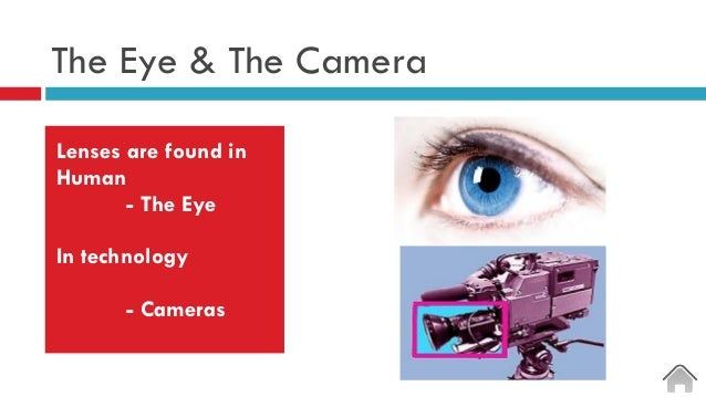 The Eye & The Camera Lenses are found in Human - The Eye In technology - Cameras