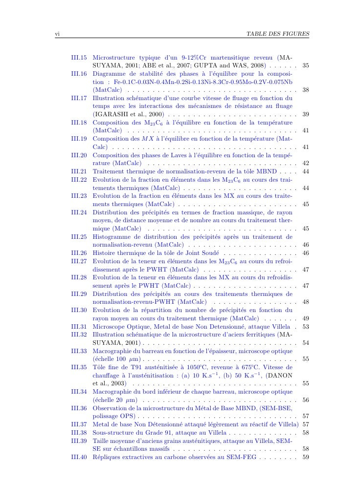 vi                                                                     TABLE DES FIGURES         III.15 Microstructure typ...