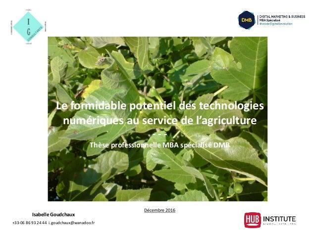 Isabelle Goudchaux +33-06 86 93 24 44 i.goudchaux@wanadoo.fr Le formidable potentiel des technologies numériques au servic...