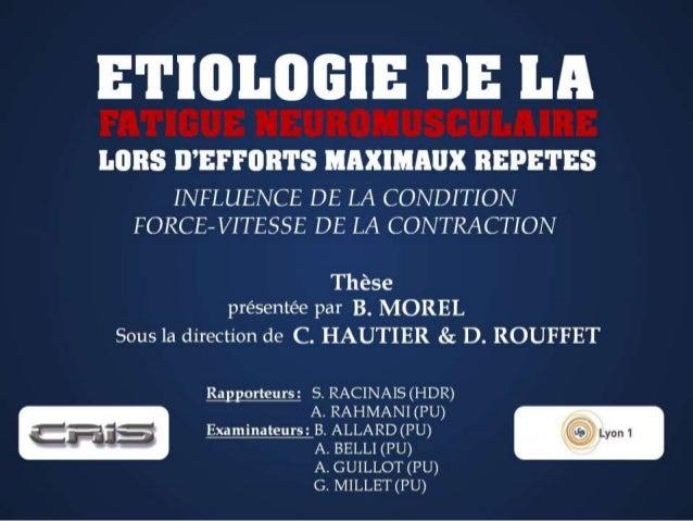 Soutenance de thèse - Baptiste Morel (12/12/2014) [Français]