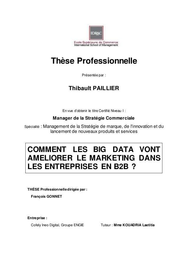 Thèse Professionnelle Présentée par : Thibault PAILLIER En vue d'obtenir le titre Certifié Niveau I : Manager de la Straté...