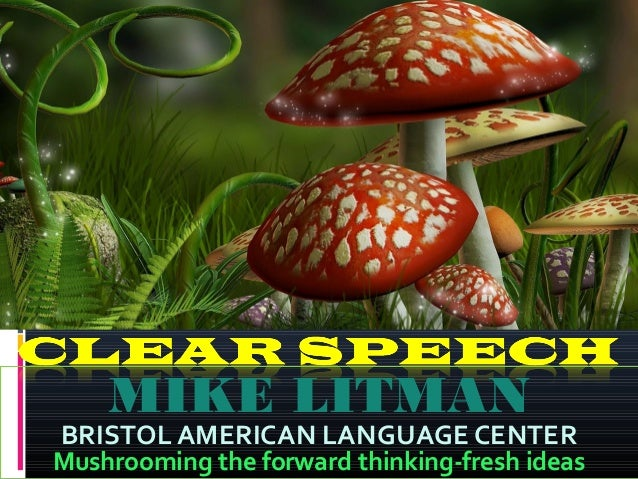 MIKE LITMAN  BRISTOL AMERICAN LANGUAGE CENTER  Mushrooming the forward thinking-fresh ideas