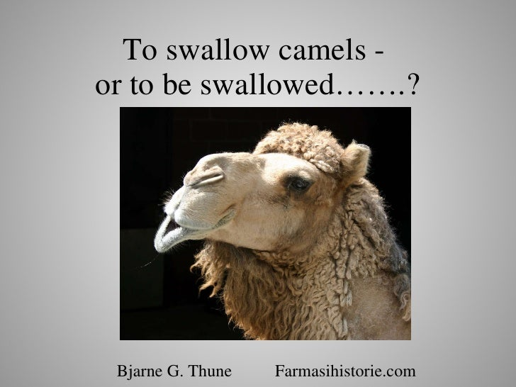 To swallow camels -  or to be swallowed…….? Bjarne G. Thune  Farmasihistorie.com