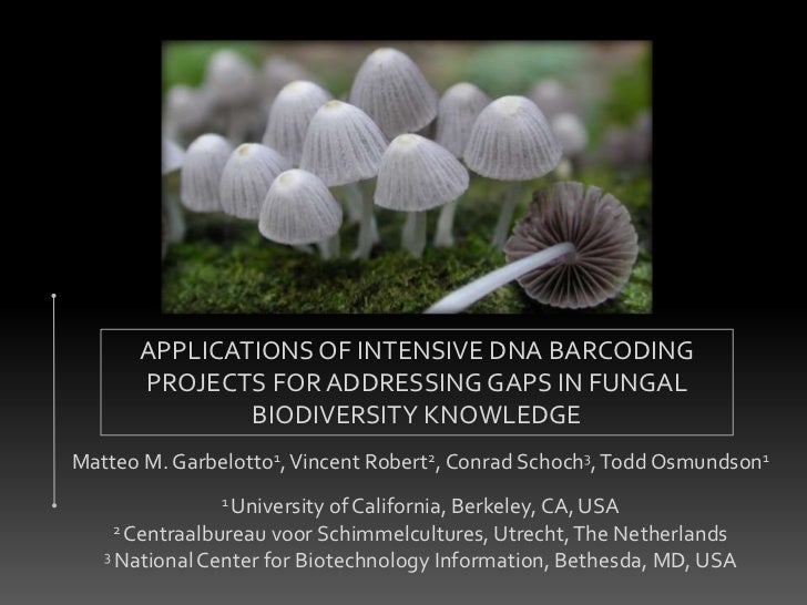 APPLICATIONS OF INTENSIVE DNA BARCODING      PROJECTS FOR ADDRESSING GAPS IN FUNGAL              BIODIVERSITY KNOWLEDGEMat...