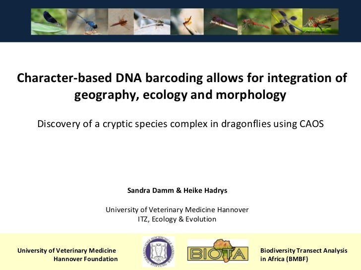 University of Veterinary Medicine  Hannover Foundation Biodiversity Transect Analysis  in Africa (BMBF) Character-based DN...