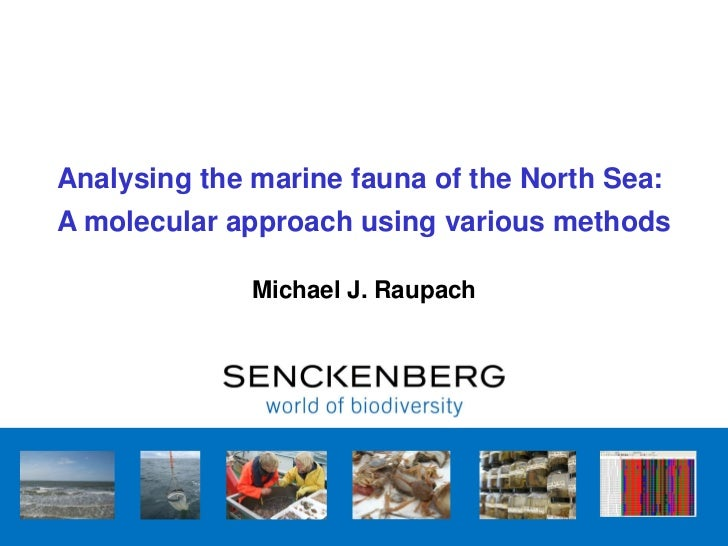 Analysing the marine fauna of the North Sea:A molecular approach using various methods              Michael J. Raupach