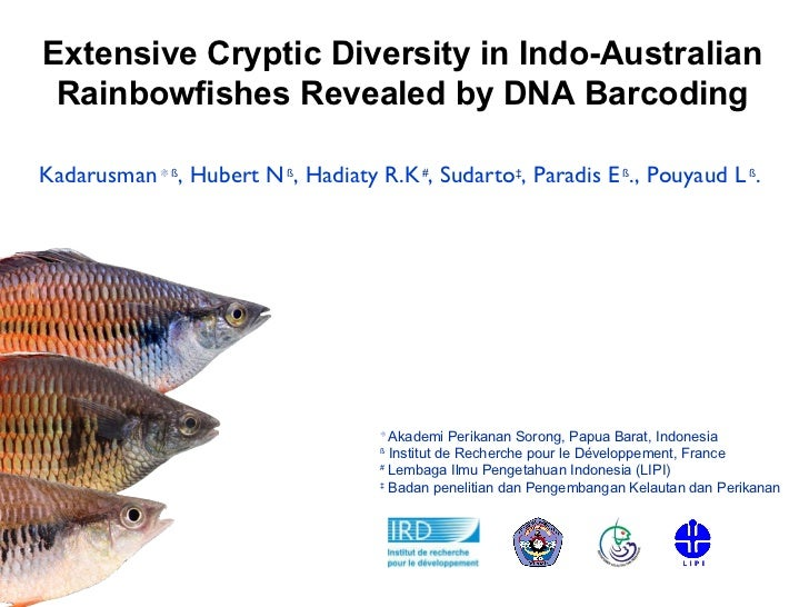 Extensive Cryptic Diversity in Indo-Australian Rainbowfishes Revealed by DNA Barcoding ❊  Akademi Perikanan Sorong, Papua ...