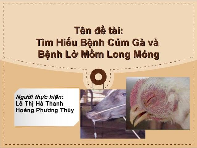 Tên đề tài: Tìm Hiểu Bệnh Cúm Gà và Bệnh Lở Mồm Long Móng  Người thực hiện: Lê Thị Hà Thanh Hoàng Phương Thùy