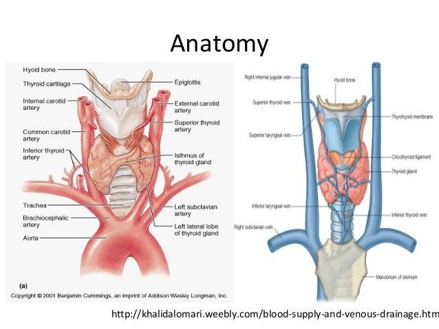 Thyroid Disorders Part 1
