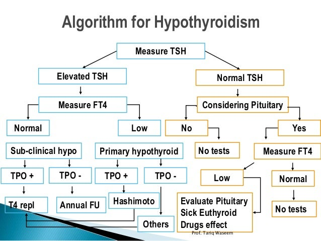 Thyroid Hormone Testing: What's the Best TSH Level?
