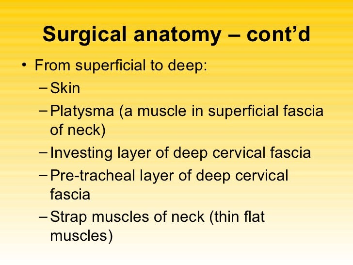 Thyroidectomy For Nursing Students