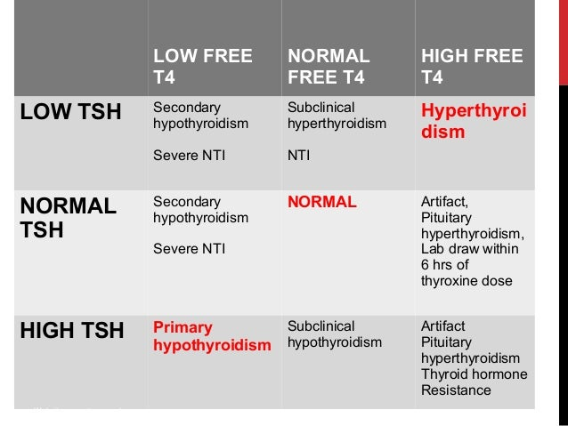 Thyroid Function Tests By Dr Smily