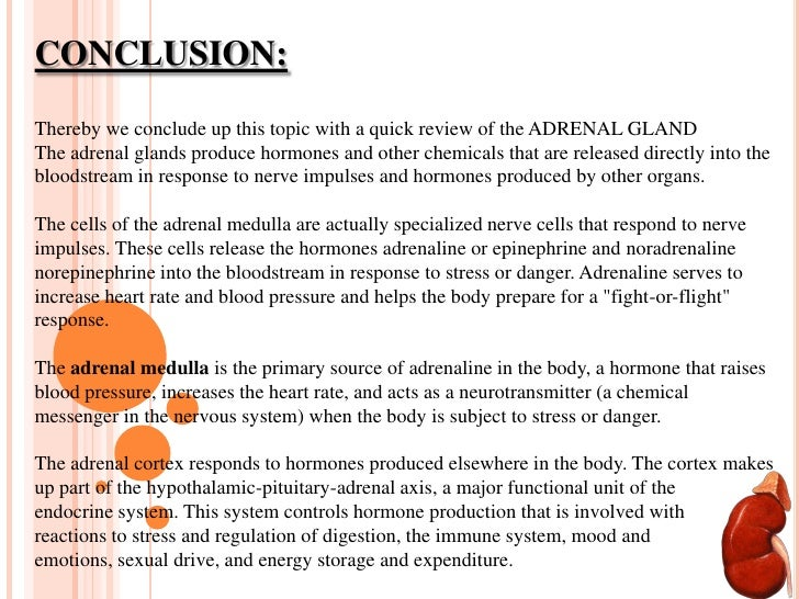 Thyroid Glandadrenal Gland And Gonads