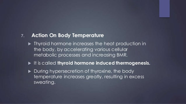 Thyroid Gland Functions