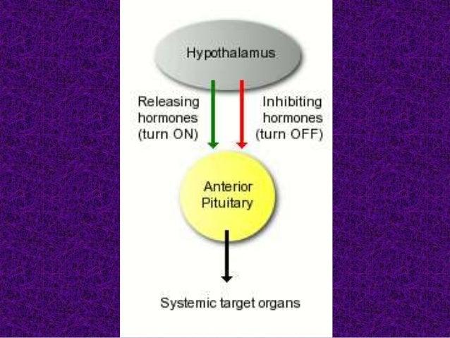 Thyroid hormones and Anti-thyroid drugs PROF SATYA 2020 Slide 3