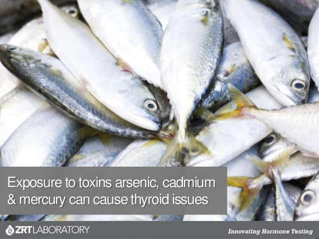Exposure to toxins arsenic, cadmium & mercury can cause thyroid issues