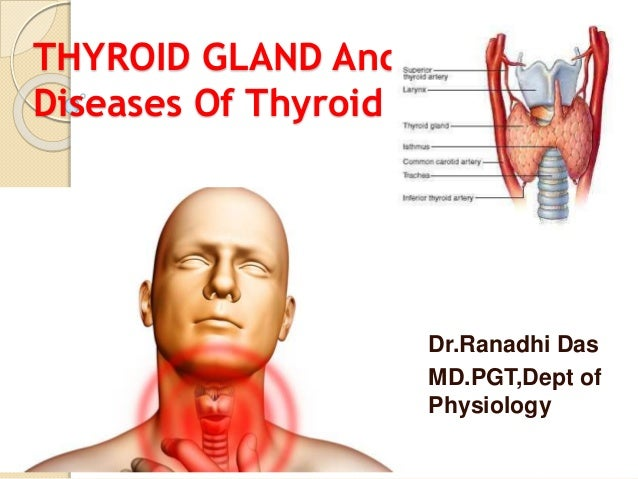 Thyroid Gland And Disease Of Thyroid Gland