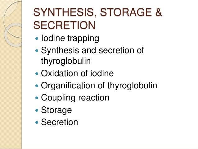 SYNTHESIS, STORAGE & SECRETION  Iodine trapping  Synthesis and secretion of thyroglobulin  Oxidation of iodine  Organi...