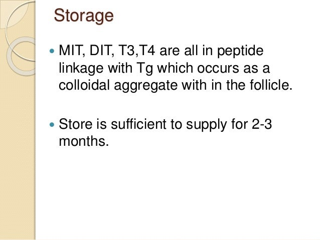 Storage  MIT, DIT, T3,T4 are all in peptide linkage with Tg which occurs as a colloidal aggregate with in the follicle. ...