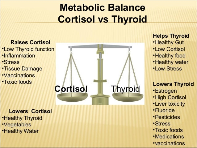 Natural Ways To Balance Cortisol Levels