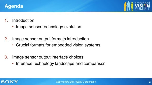 Image Sensor Formats and Interfaces for IoT Applications,