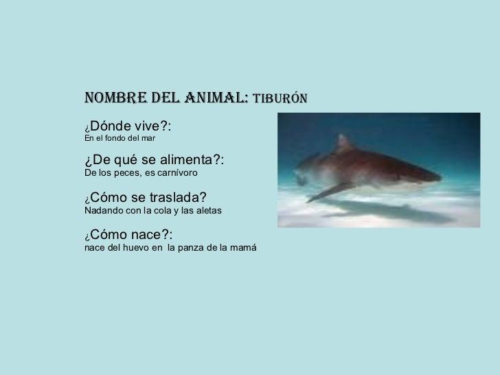 Tibur n for Como se cultivan los peces