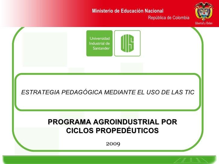 ESTRATEGIA PEDAGÓGICA MEDIANTE EL USO DE LAS TIC 2009 PROGRAMA AGROINDUSTRIAL POR CICLOS PROPEDÉUTICOS Ministerio de Educa...
