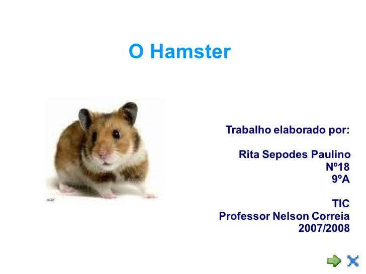 O Hamster Trabalho elaborado por: Rita Sepodes Paulino Nº18 9ºA TIC Professor Nelson Correia 2007/2008
