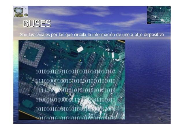 3030 BUSESBUSES Son los canales por los que circula la información de uno a otro dispositivo